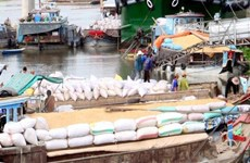 Agro-fishery-forestry export surges in first 8 months