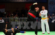 SEA Games 29: Vietnam earns third gold in pencak silat