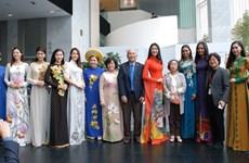 Vietnamese Ao dai enchants Seoul audience