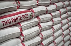 Thai Government helps farmers stabilise rice prices