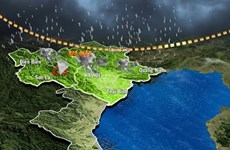 Gov't to fine bad weather forecasters