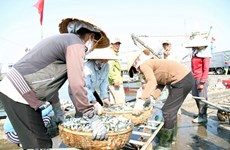 Seafood output hits 2.3 million tonnes in eight months