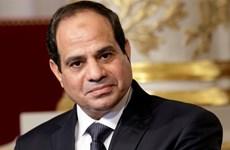 Vietnam – one of priorities in Egypt's Look East policy: ambassador