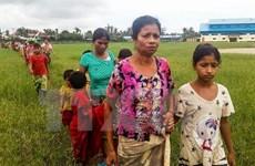 123,000 Myanmar people flee into Bangladesh