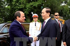 Egyptian President concludes Vietnam visit