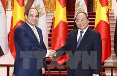 Vietnam, Egypt strive for 1 billion USD trade