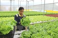 Conferences to encourage farmers' entrepreneurship