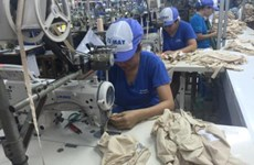 Apparel exports predicted to hit 30.5 billion USD