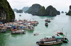Ha Long attractive to real estate, tourism firms