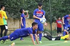 Vietnam football team ranks second in Southeast Asia