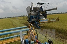 Thailand encourages investment in modern agriculture