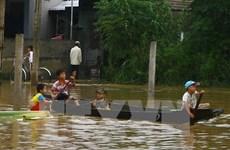 Nearly 132,000 Gia Lai households escape poverty