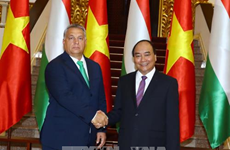Vietnamese, Hungarian PMs affirm valuing ties during talks