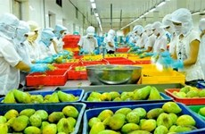 Vietnam strategises to reach yearly export value target