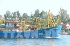 Quang Nam to spend 5 million USD upgrading fishing port