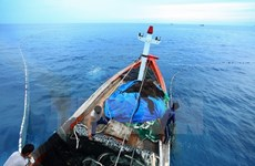 Vietnam, China talk sea area off mouth of Tonkin Gulf