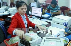 Reference exchange rate goes down by 2 VND at week's beginning