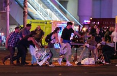No Vietnamese casualties reported in Las Vegas shootings