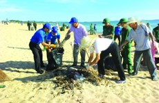 VN needs environmental security strategy: experts