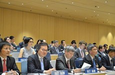 WIPO chairmanship reflects Vietnam's growing stature