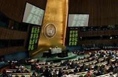 Vietnam backs UN anti-crime efforts