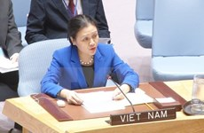 Ambassador highlights Vietnam's stand in disarmament, nuclear non-proliferation