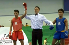 Wushu fighter finds gold for Vietnam after 16 years