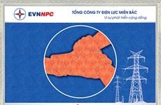Fingerprint painting registers for Vietnam Record title