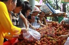 Enterprises advised to focus on organic fruit, vegetable exports to EU