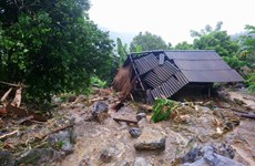 Hoa Binh: 41 died, injured, missing in floods, landslides