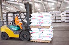 Vietnam exports nearly 1 million tonnes of fertiliser yearly