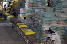 Vietnam rice industry should focus on quality: experts