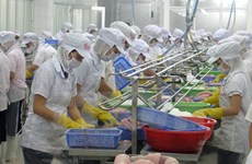 Tien Giang works to support enterprises