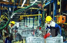 Labour productivity key to SMEs' sustainable development