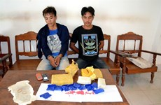 Juvenile drug traffickers multiply at VN-Lao border
