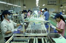 HCM City's FDI attraction doubles in Jan-Oct