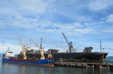 Tien Sa Port gets fund to expand