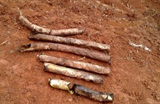 60 bomblets found in Quang Tri province