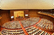 Legislators discuss revisions of law on overseas representative missions