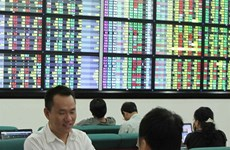 VN Index down on low investor confidence