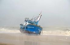 Storm Damrey makes landfall in south central coast