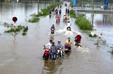 Vietnam Fatherland Front offers aid to storm victims