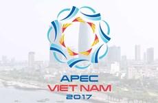 Vietnam to host APEC 2017 summit amid challenges: Cambodian expert