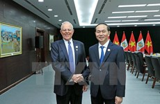 APEC 2017: Vietnam wants to expand cooperation with Peru