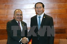 APEC 2017: Vietnam, Papua New Guinea enhance cooperation