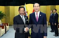 APEC 2017: President Tran Dai Quang welcomes Brunei's Sultan