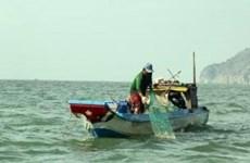Vietnam seafood mulls action on EU warning