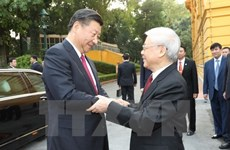 Party chiefs Nguyen Phu Trong, Xi Jinping hold talks