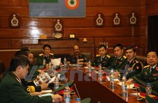 Vietnam, India look to strengthen defence relations