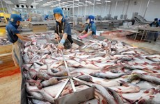 Vietnamese exporters must defend against trade suits
